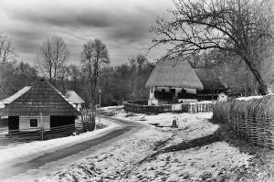 iarna tara