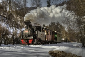 Il treno Mocanita