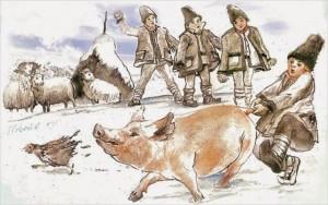 bambini-maiale