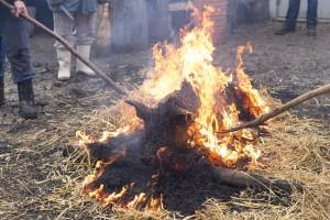 maiale-fuoco